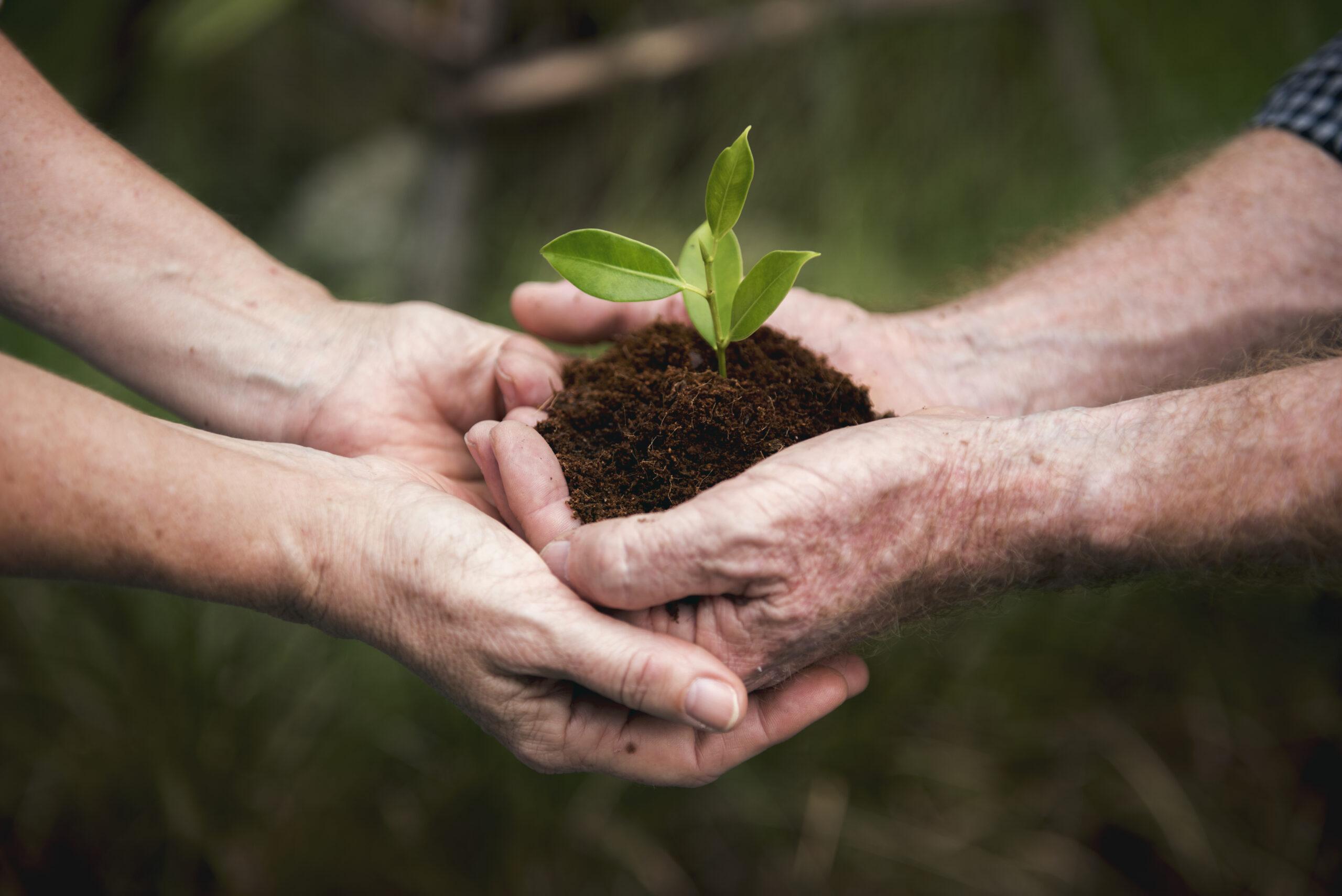 Communicate Your Organization's Environmental Impact